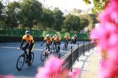 团队计时赛 Team Time Trial